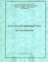 9 BCTC HOP NHAT QUY III 2016