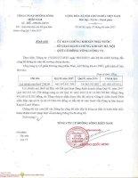 SWC Baocaotaichinh Q1 2017 Congtyme