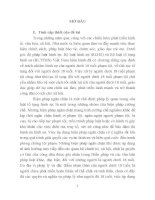 Áp dụng các biện pháp ngăn chặn đối với người dưới 18 tuổi phạm tội theo pháp luật tố tụng hình sự Việt Nam từ thực tiễn quận Cẩm Lệ, thành phố Đà Nẵng (tt)