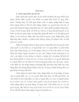 Trả hồ sơ để điều tra bổ sung trong giai đoạn xét xử sơ thẩm vụ án hình sự theo pháp luật tố tụng hình sự việt nam từ thực tiễn thành phố đà nẵng (tt)