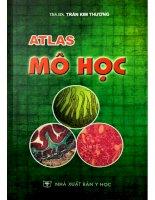 Atlas mô học hình ảnh minh họa