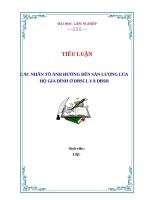 SỬ DỤNG PHƯƠNG PHÁP HỒI QUY TUYẾN TÍNH ĐA BIẾN PHÂN TÍCH CÁC NHÂN TỐ ẢNH HƯỞNG ĐẾN SẢN LƯỢNG LÚA HỘ GIA ĐÌNH Ở ĐBSCL VÀ ĐBSH