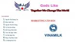 Thực hành marketing văn bản chiến lược định vị sản phẩm vinamilk 1
