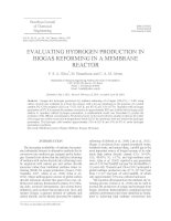 EVALUATING HYDROGEN PRODUCTION IN BIOGAS REFORMING IN A MEMBRANE REACTOR