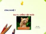 Bài 31. Giống vật nuôi