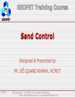 C6 sand control WHY??????????