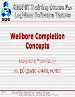 C1 wellbore completion concepts
