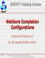 C2 wellbore completion configurations