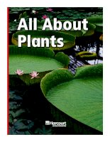 All about plants 15 trang