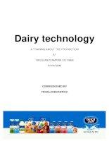 Công nghệ sản xuất sữa tươi tiệt trùng Cô gái Hà Lan