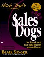 Blair Singer Sales Dogs