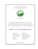 Tìm hiểu quy trình sản xuất và thị trường tiêu thụ nấm của chủ cơ sở nấm Thanh Hưng tại xã Tiên Hội  huyện Đại Từ  tỉnh Thái Nguyên (Khóa luận tốt nghiệp)