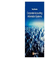 Corporate accounting information systems