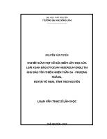Nghiên cứu một số đặc điểm lâm học của loài xoan đào (pygeum arboreum endl) tại khu bảo tồn thiên nhiên thần sa   phượng hoàng, huyện võ nhai, tỉnh thái nguyên