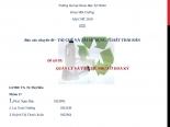 Đề tài 09: QUẢN LÝ VÀ TÁI CHẾ NHỰA Ở HOA KỲ