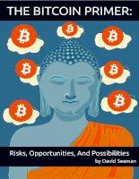 Bitcoin primer