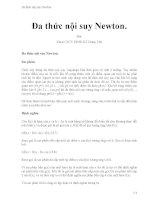 Đa thức nội suy newton