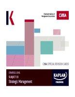 Strategic e3 strategic management