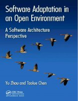 Sofware adaptation in an open environment