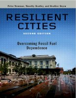 Reslilient cities 2nd overcoming fossil fuel dependence