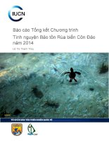 Báo cáo Tổng kết Chương trình Tình nguyện Bảo tồn Rùa biển Côn Đảo năm 2014
