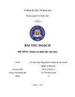 Tổ chức hoạt động Quản trị nhân lực tại  doanh nghiệp ở Việt Nam