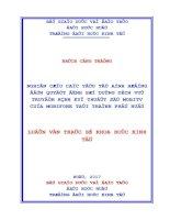 NGHIÊN cứu các yếu tố ẢNH HƯỞNG đến QUYẾT ĐỊNH sử DỤNG DỊCH vụ TRUYỀN HÌNH kỹ THUẬT số MOBITV của MOBIFONE tại THÀNH PHỐ HUẾ