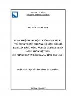 Hoàn thiện hoạt động kiểm soát rủi ro tín dụng trong cho vay hộ kinh doanh tại ngân hàng NNPTNT việt nam   chi nhánh huyện krông ANA, tỉnh đăk lắk