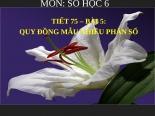 Bài giảng Số học 6 chương 3 bài 5: Quy đồng mẫu nhiều phân số