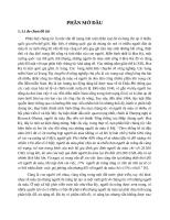 Vấn đề phân biệt chủng tộc trong giết con chim nhại  của harper lee
