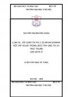ĐÁNH GIÁ kết QUẢ của PHÁC đồ BEVACIZUMAB kết hợp XELOX TRONG điều TRỊ UNG THƯ đại TRỰC TRÀNG GIAI đoạn IV