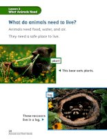 chapter 2 animals and their needs lesson 2 what animals need 161130020949