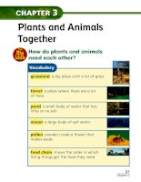 chapter 3 plants and animals together lesson 1 land habitats 161130021236