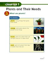 chapter 1 plants and their needs lesson 1 plants everywhere 161130014754
