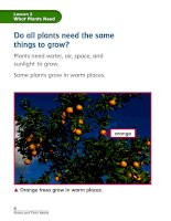 chapter 1 plants and their needs lesson 2 what plants need 161130020515