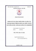 ĐÁNH GIÁ tác DỤNG BUỒN nôn và nôn của GRANISETRON ở BỆNH NHÂN SAU PHẪU THUẬT cột SỐNG được GIẢM ĐAU BẰNG PCA MORPHIN