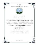 Nghiên cứu đặc điểm thực vật và khảo sát hàm lượng nystose của Ba kích tại Tây Giang, Quảng Nam