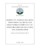 Nghiên cứu tinh dầu hoa hồng thơm trồng tại Trung tâm khảo nghiệm nghiên cứu các giống hoa hồng huyện Lương Sơn, tỉnh Hòa Bình