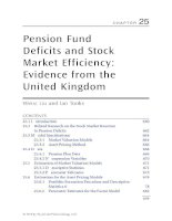 Chapter 25  pension fund deficits and stock market efficiency; evidence from the united kingdom
