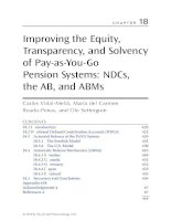 Chapter 18  improving the equity, transparency, and solvency of pay as you go pension systems
