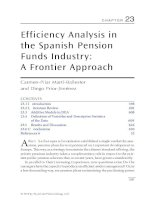 Chapter 23  efficiency analysis in the spanish pension funds industry; a frontier approach