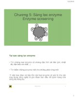 Sàng lọc enzyme Enzyme screening