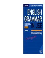 English grammar in use intermediate 2019 5th ed