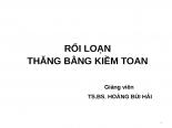 Bai giang roi loan kiem toan Y6