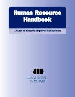 Human resource handbook guide to effective employee management (2008)