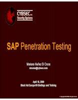 EN SAP penetration testing black h europe