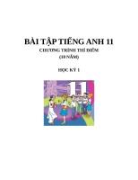 Bài tập Tiếng Anh 11 thí điểm   HK1