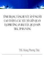 Hoang phuong thuy