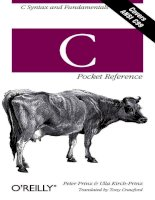IT training c pocket reference  c syntax and fundamentals prinz  kirch prinz 2002 11 30