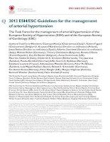 ESC hypertension 2013 khotailieu y hoc